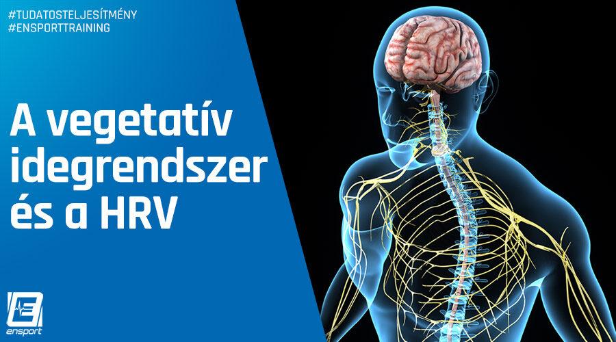 Üss, fuss, pihenj, eméssz! – A vegetatív idegrendszer és a HRV