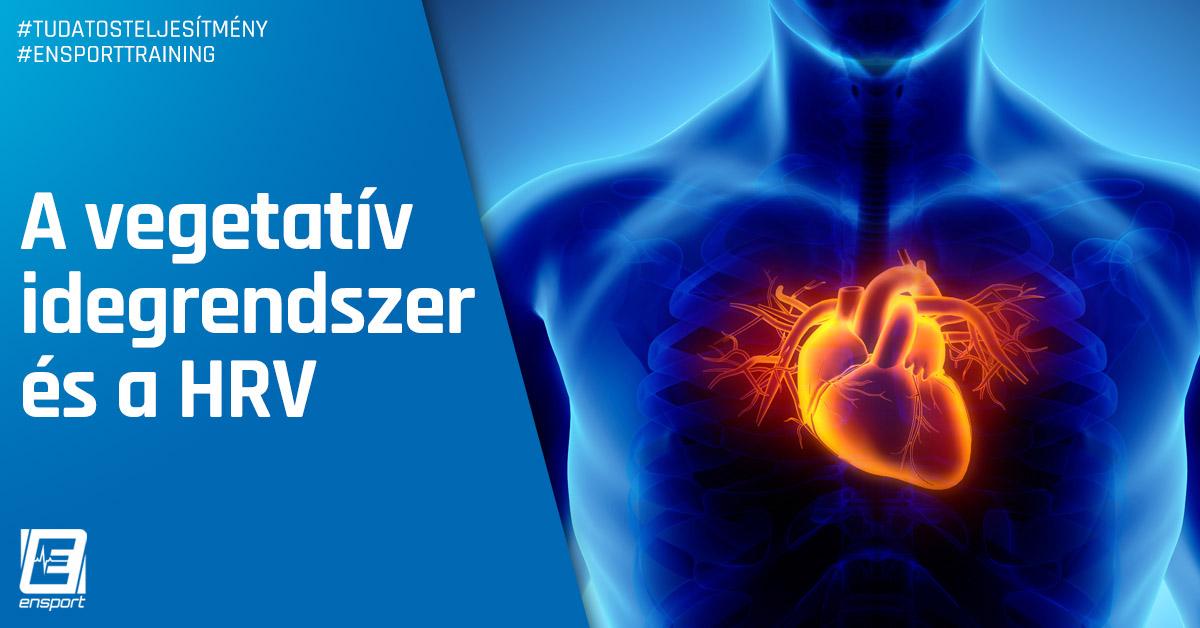 A vegetatív idegrendszer és a HRV
